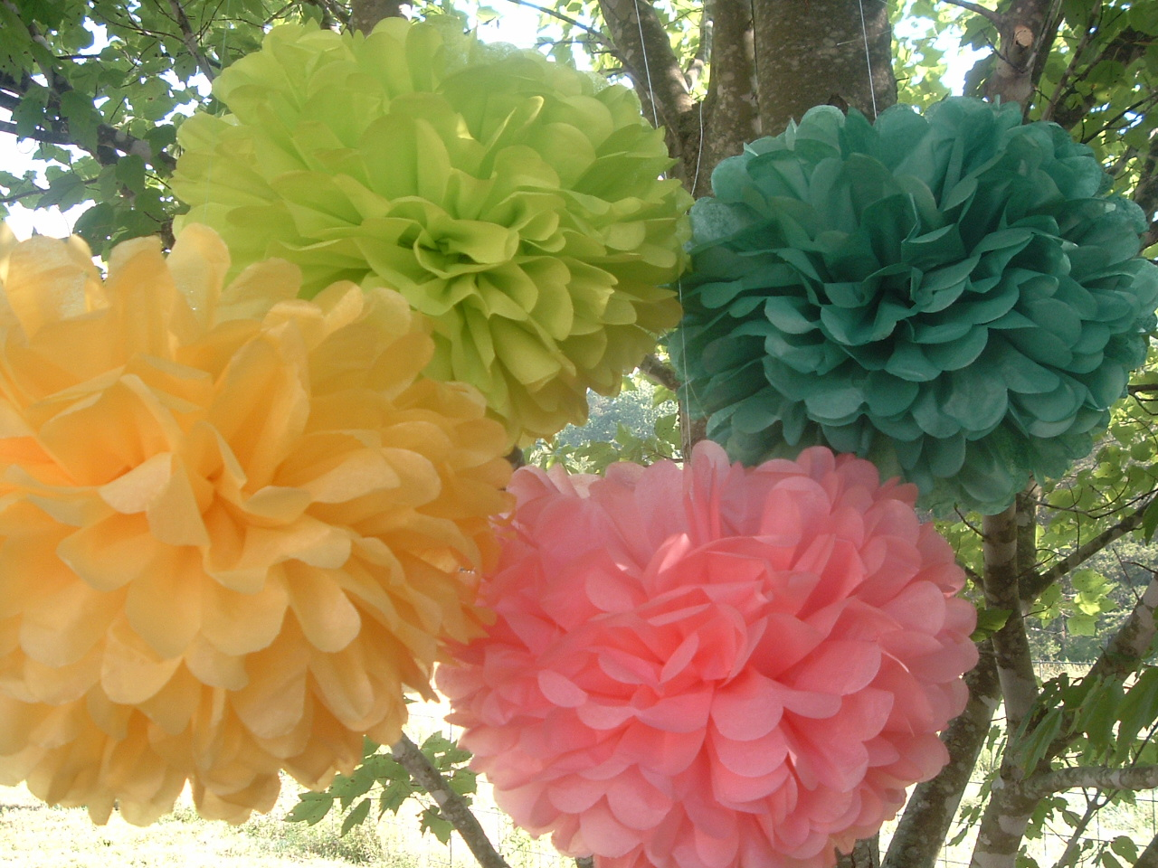 party decorations wedding decorations 10 tissue paper poms on luulla - Tissue Paper Decorations